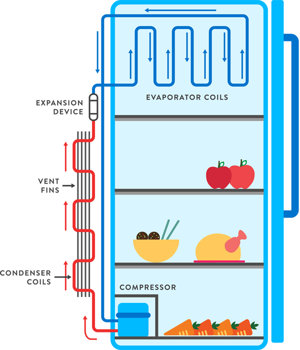 Diagram Of Fridge - Auto Electrical Wiring Diagram •